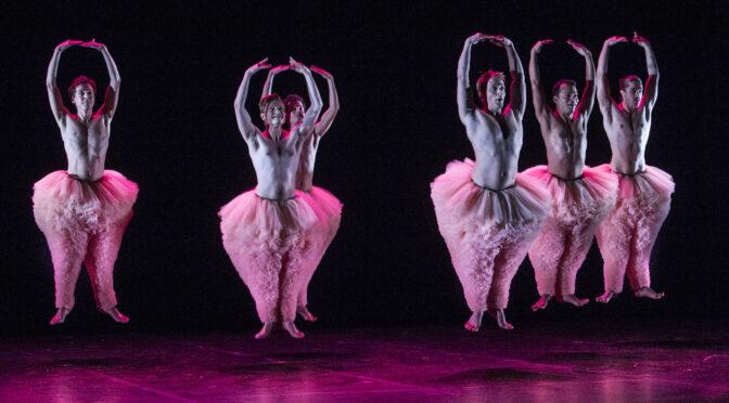 Centre culturel Provins, concert, musique, théâtre, comédie, arts du cirque, spectacle, enfant, cirque, forum, conférence
